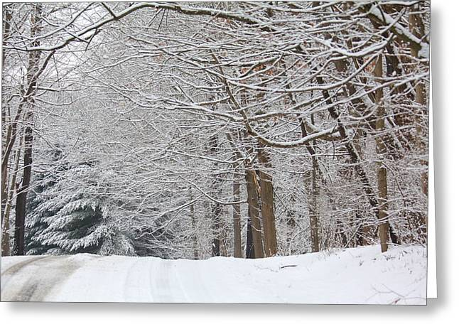 Snow Scene Landscape Greeting Cards - Winter in Mill Creek Park 2 Greeting Card by Annie  DeMilo