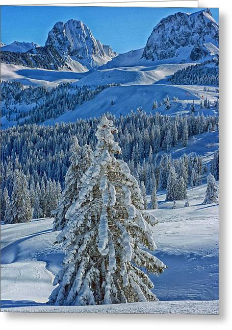 Winter In The Alps Greeting Card by Mountain Dreams