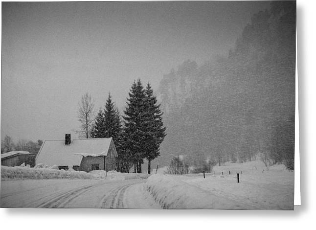 Mandal Greeting Cards - Winter in the countryside Greeting Card by Mirra Photography