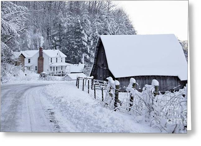 Winterscape Greeting Cards - Winter in Virginia Greeting Card by Benanne Stiens