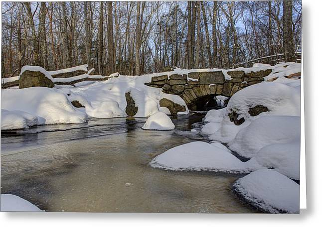 New England Snow Scene Greeting Cards - Winter in Weetamoo Woods Greeting Card by Andrew Pacheco