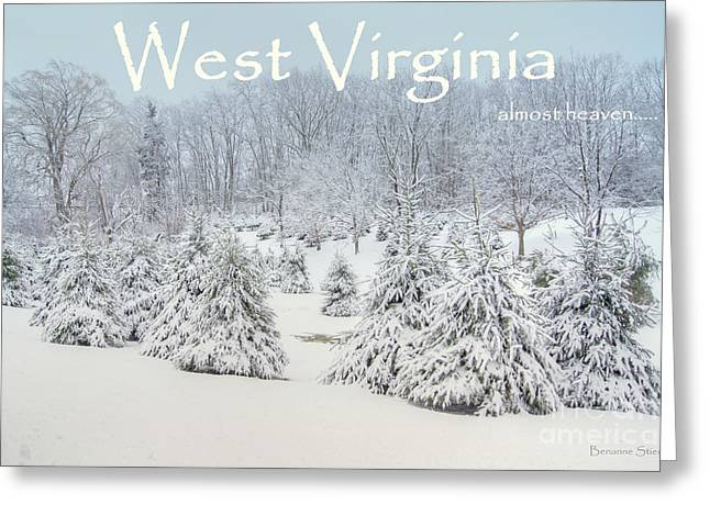 Evergreen Covered In Snow Greeting Cards - Winter in West Virginia Greeting Card by Benanne Stiens