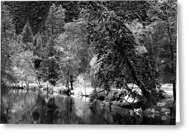 Yosemite Creek Greeting Cards - Winter in Yosemite Greeting Card by Mountain Dreams