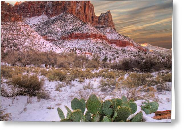 Winter in Zion National park Utah Greeting Card by Utah Images