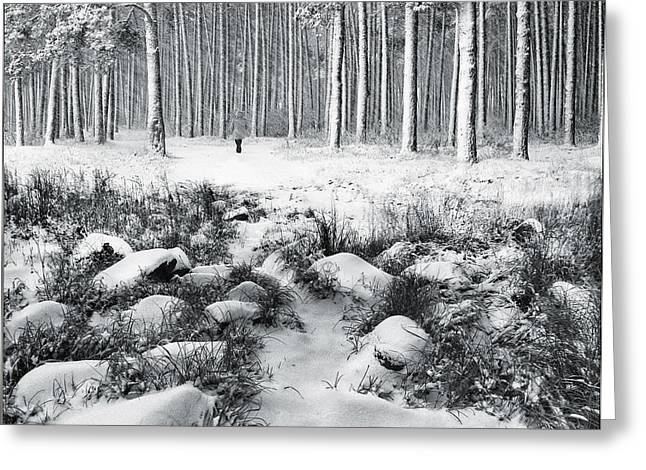Winter is Here Greeting Card by Vladimir Kholostykh