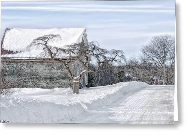 Winter Is Our Guest Greeting Card by Richard Bean