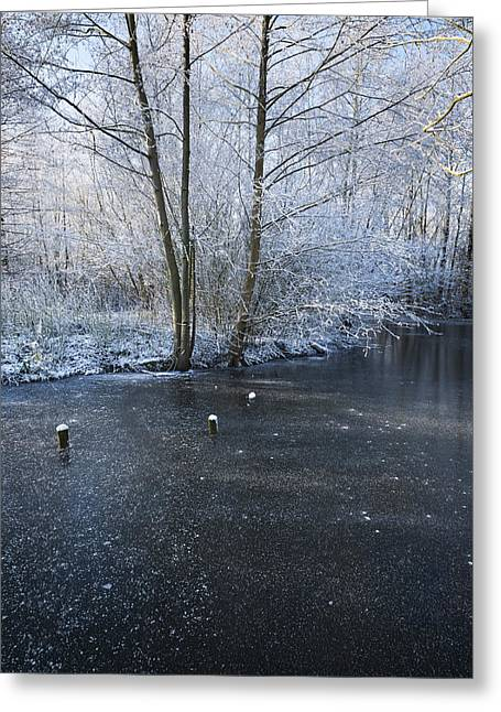 Snowy Stream Greeting Cards - Winter Lake Greeting Card by Svetlana Sewell