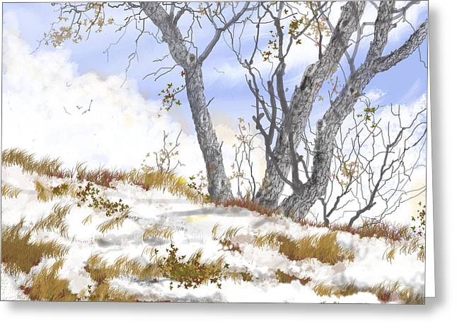 Photoshop Drawings Greeting Cards - Winter Landscape-2 Greeting Card by Jim Hubbard
