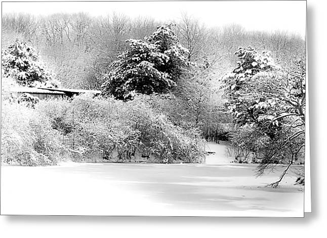 Bare Trees Greeting Cards - Winter Landscape Black and White Greeting Card by Julie Palencia
