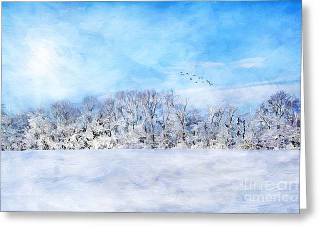 Winter Digital Photo Scene Greeting Cards - Winter Landscape Greeting Card by Darren Fisher