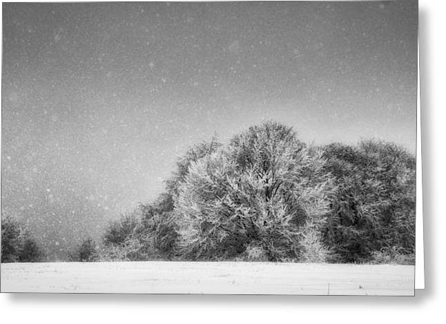 Overcast Day Greeting Cards - Winter Landscape Greeting Card by Dobromir Dobrinov