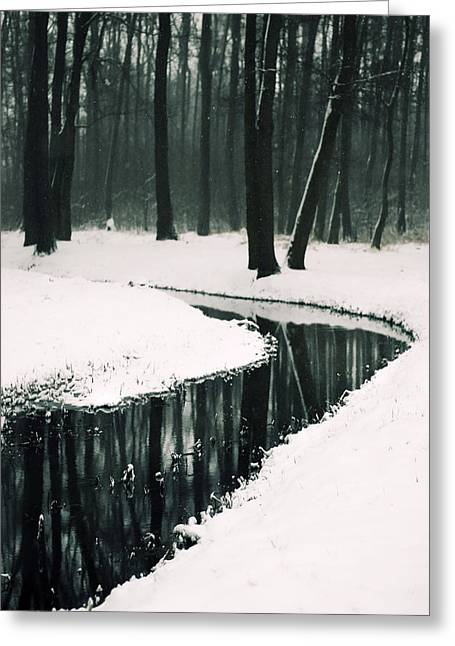 Dream Like Greeting Cards - Winter landscape Greeting Card by Joanna Jankowska