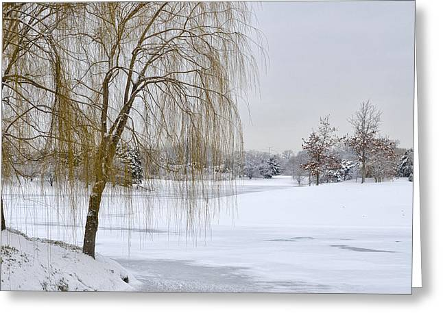 Snow Scene Landscape Greeting Cards - Winter Landscape Greeting Card by Julie Palencia