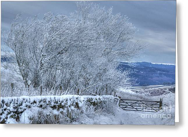 Winter Landscape Near Buxton Greeting Card by David Birchall