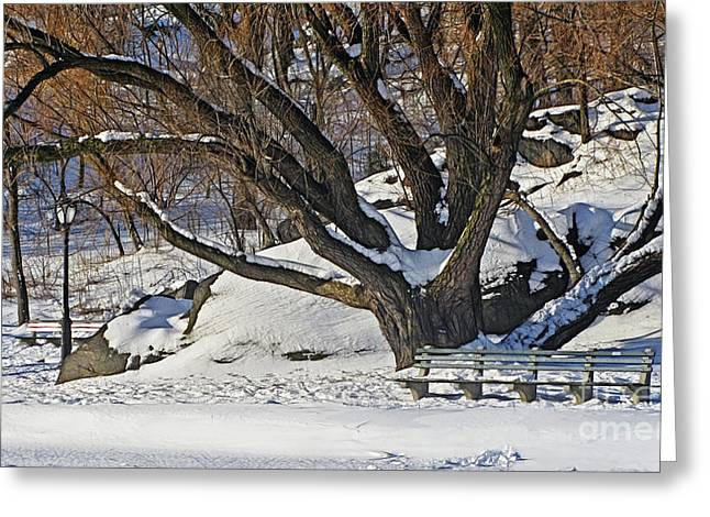 Framed Winter Snow Print Greeting Cards - Winter Landscape Greeting Card by Nishanth Gopinathan