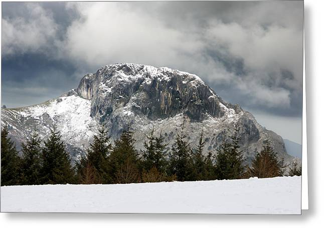 Pais Vasco Greeting Cards - Winter Landscape With A Mountain And Pines Greeting Card by Mikel Martinez de Osaba