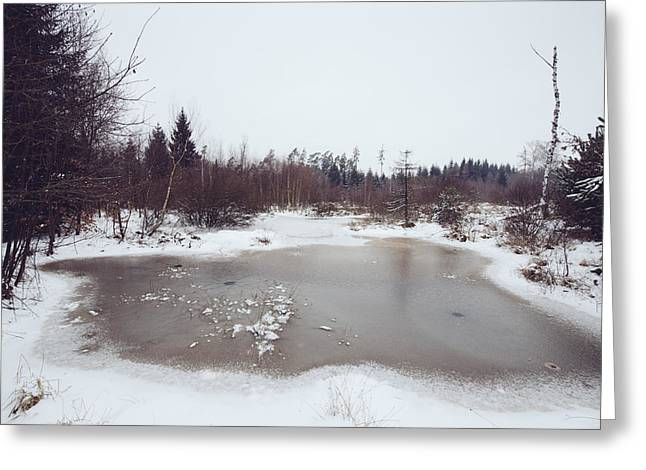Winter landscape with trees and frozen pond Greeting Card by Matthias Hauser