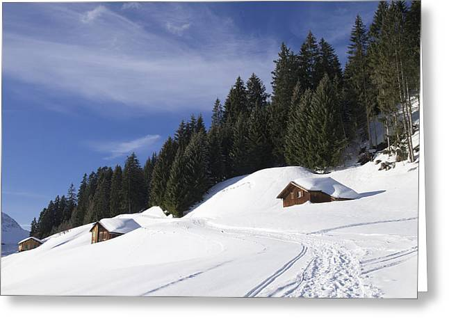 Winterly Greeting Cards - Winter landscape with trees and houses in Austria Greeting Card by Matthias Hauser