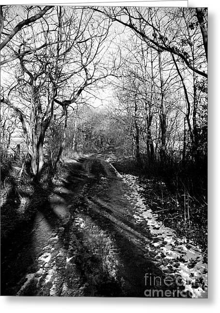 Mud Season Greeting Cards - Winter Lane Greeting Card by Deborah Benbrook