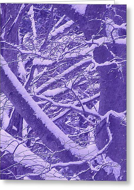 Eps10 Greeting Cards - Winter Greeting Card by Lanjee Chee