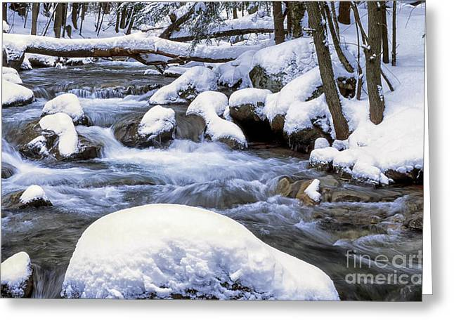 Allegheny Mountains Greeting Cards - Winter Leatherwood Creek Greeting Card by Thomas R Fletcher