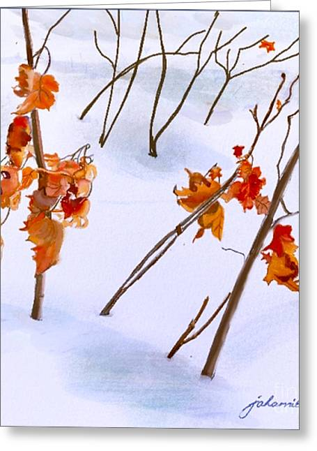 Joan A Hamilton Greeting Cards - Winter Leaves Greeting Card by Joan A Hamilton