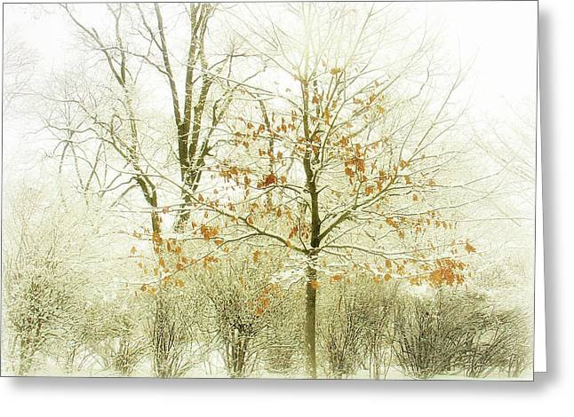 Winter Scene Digital Art Greeting Cards - Winter Leaves Greeting Card by Julie Palencia