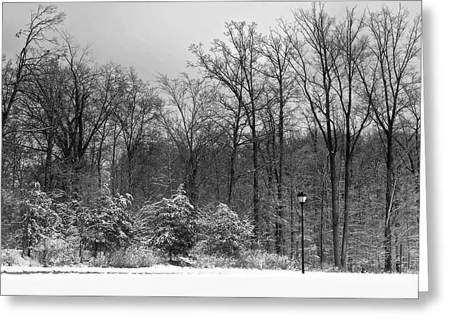 Snow-covered Landscape Photographs Greeting Cards - Winter Light Post Greeting Card by Frozen in Time Fine Art Photography