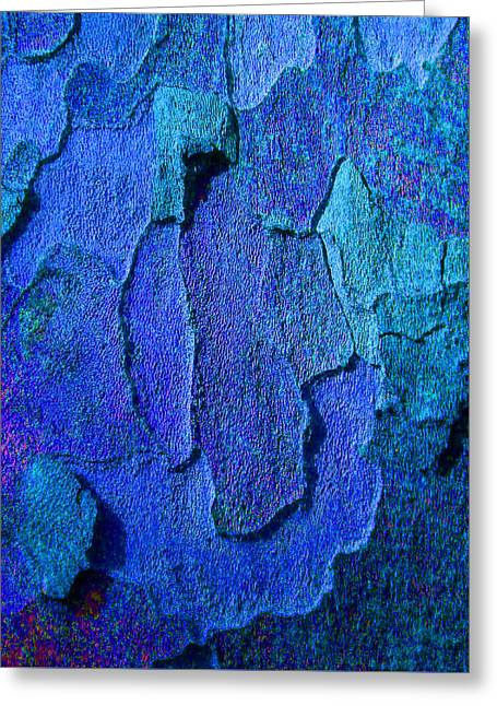 Coloured Bark Greeting Cards - Winter London Plane Tree Abstract 4 Greeting Card by Margaret Saheed