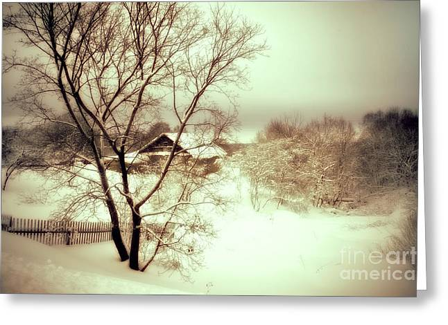 Snowy Day Greeting Cards - Winter Loneliness Greeting Card by Jenny Rainbow