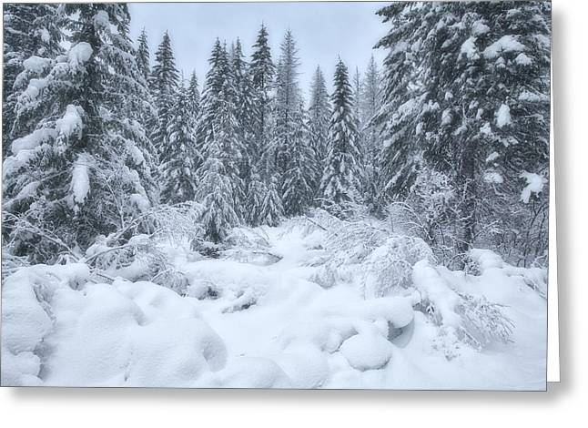 River Scenes Greeting Cards - Winter Magic Greeting Card by Darren  White