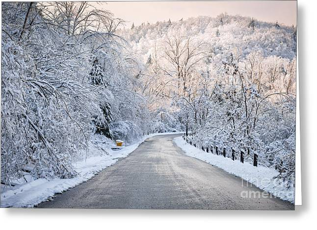 Pink Road Greeting Cards - Winter magic Greeting Card by Elena Elisseeva