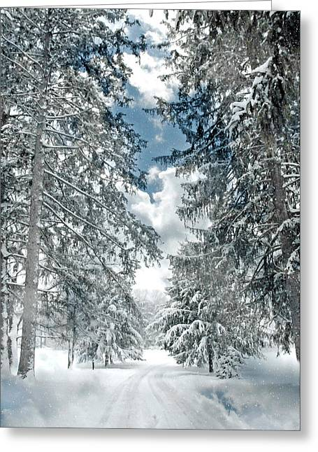Crawford County Greeting Cards - Winter Me Greeting Card by Diana Angstadt