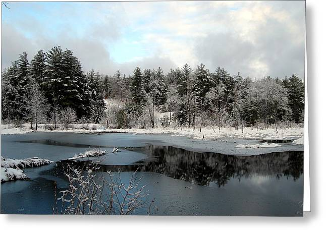 Snow-covered Landscape Greeting Cards - Winter Greeting Card by Mim White