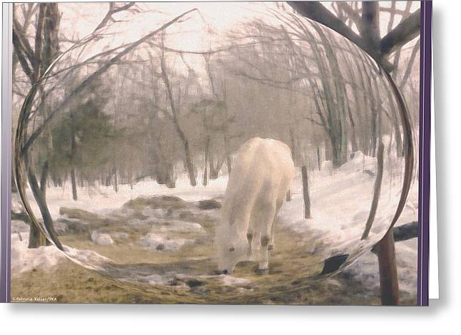 Patricia Keller Greeting Cards - Winter Moments- With My Paso Fino Stallion Greeting Card by Patricia Keller