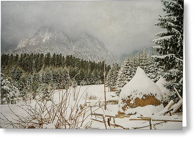 Snowy Day Greeting Cards - Winter mood Greeting Card by Cristina-Velina Ion