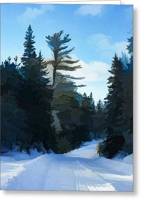 Snowy Roads Digital Greeting Cards - Winter Mood Impressions - Snowy Road in Algonquin Greeting Card by Georgia Mizuleva