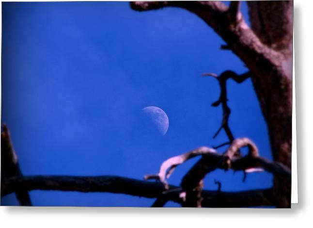 Prescott Greeting Cards - Winter Moon Greeting Card by Aaron Burrows