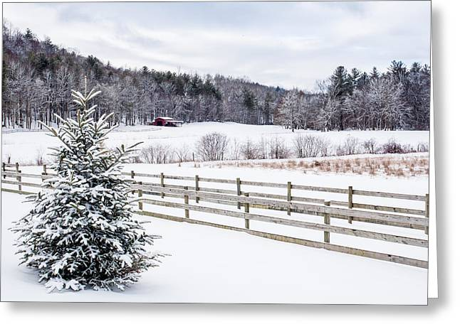 Fencing Greeting Cards - Winter Morn on the Farm Greeting Card by Rob Travis