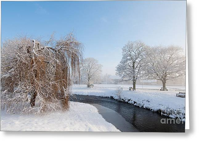 Beck Greeting Cards - Winter Morning at Sinnigton Greeting Card by Janet Burdon