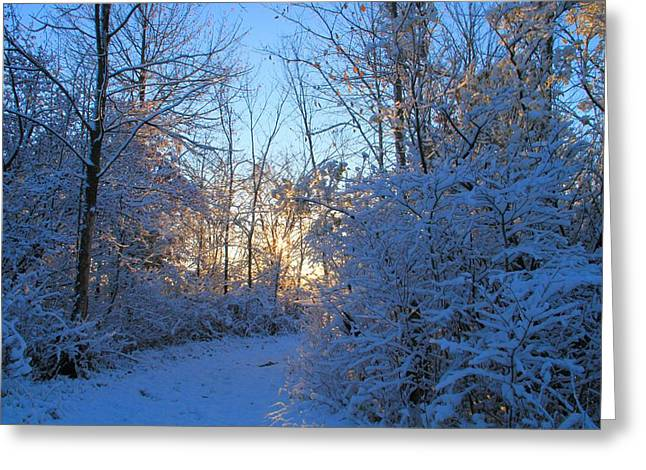 Snowstorm Greeting Cards - Winter Morning Hike Greeting Card by Dan Sproul