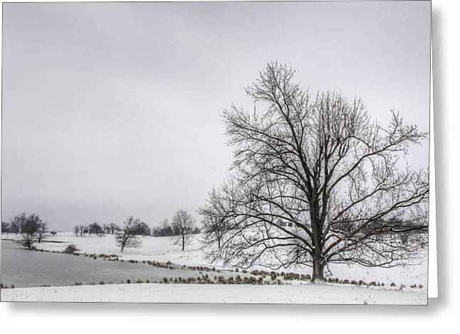 Daviess County Photographs Greeting Cards - Winter Morning in Kentucky Greeting Card by Wendell Thompson