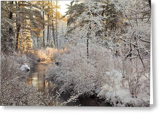 Winter Morning Greeting Card by Larry Landolfi