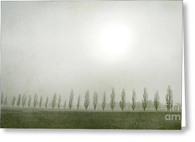 Winter Morning Londrigan 7 Greeting Card by Linda Lees