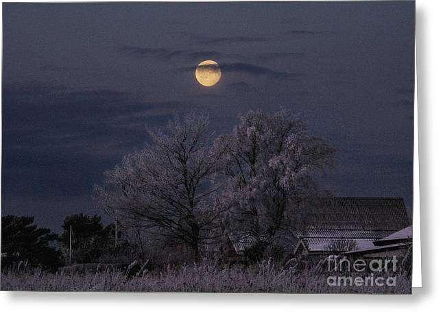 Kim Photographs Greeting Cards - Winter Morning Moon Greeting Card by Kim Lessel