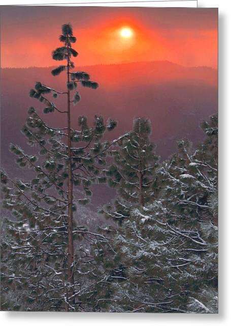 Kings Canyon National Park Greeting Cards - Winter Mountain Sunset Greeting Card by Stephen  Vecchiotti