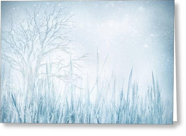 Mythja Digital Art Greeting Cards - Winter Greeting Card by Mythja  Photography