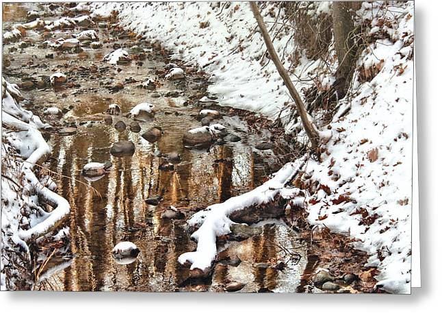 Winter - Natures Harmony Greeting Card by Mike Savad