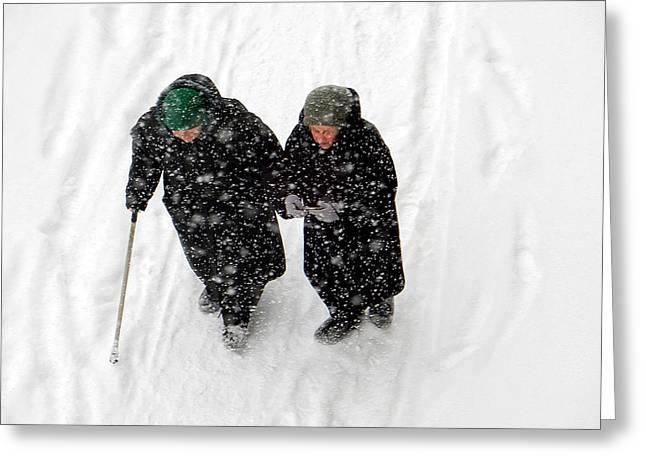Christmas Greeting Greeting Cards - Winter Navigation  Greeting Card by Svetlana Nilova