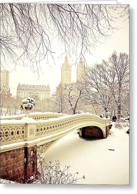 New York Photo Greeting Cards - Winter - New York City - Central Park Greeting Card by Vivienne Gucwa